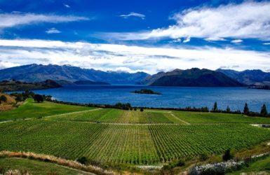 Nouvelle-Zélande: les 4 merveilles naturelles à découvrir